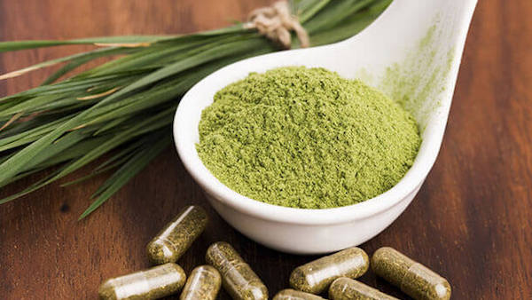 The War on Kratom